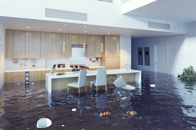 WATER DAMAGE AND DRYING